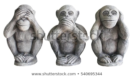 See No Evil, Hear No Evil, Speak No Evil Stock photo © Aikon