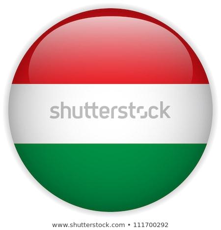 стекла · кнопки · флаг · Венгрия · красный · лук - Сток-фото © maxmitzu