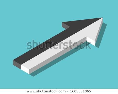 два Стрелки черно белые оппозиция серый прибыль на акцию Сток-фото © limbi007