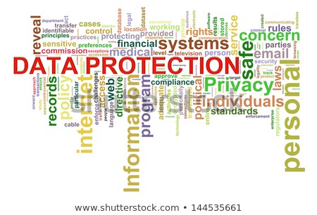 Information Security.  Wordcloud Concept. Stock photo © tashatuvango