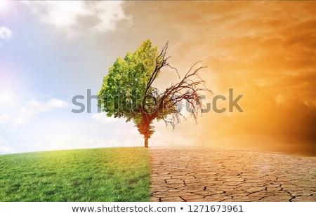 Global Warming Grunge Concept Stock photo © burakowski