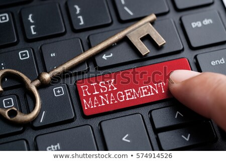 Risk Management on Red Keyboard Button. Stock photo © tashatuvango