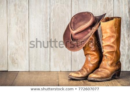 Botas de vaqueiros par marrom couro branco fundo Foto stock © vanessavr