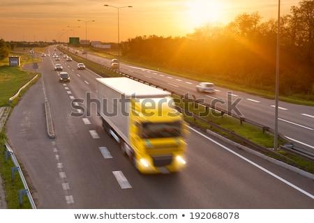Rush Delivery on Red Road Sign. Stock photo © tashatuvango