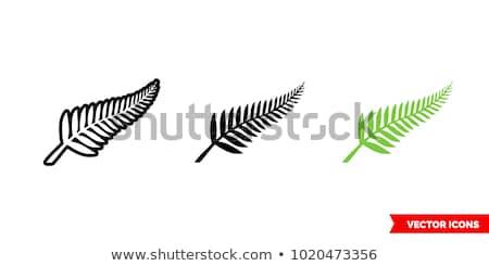 деревья · вечер · острове · Новая · Зеландия · город · расстояние - Сток-фото © undy