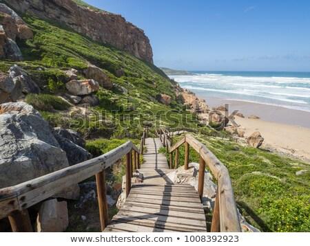 adımlar · cornwall · plaj · manzara · yaz - stok fotoğraf © fouroaks
