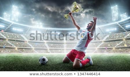 futbolista · victoria · celebrar · cute · nino - foto stock © deandrobot