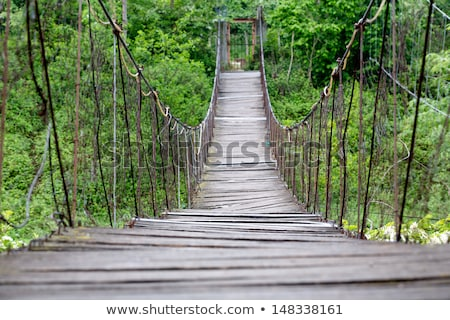Houten oude brug berg stream beschadigd Stockfoto © taviphoto