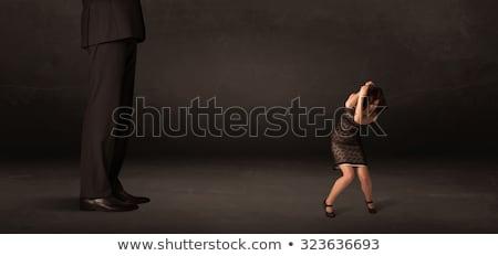 Hatalmas férfi kicsi üzletasszony áll elöl Stock fotó © ra2studio
