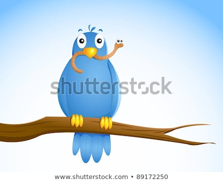 Early bird catching a worm Stock photo © bluering