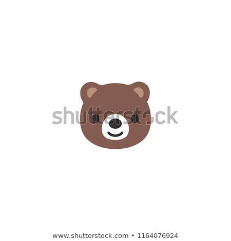 Aranyos medve szemek háttér zöld ajándék Stock fotó © bluering