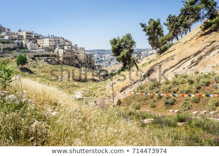 Silwan neighborhood in Jerusalem, Israel. Stock photo © rglinsky77