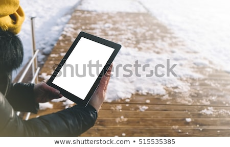 woman with tablet in the moutains Stock photo © Giulio_Fornasar