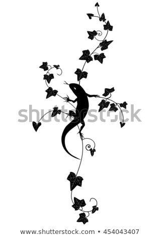 Zarif grafik elemanları form doku soyut Stok fotoğraf © tatiana3337