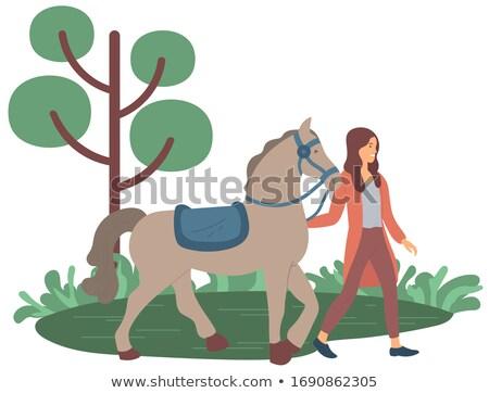 портрет женщины жокей Постоянный лошади Сток-фото © wavebreak_media
