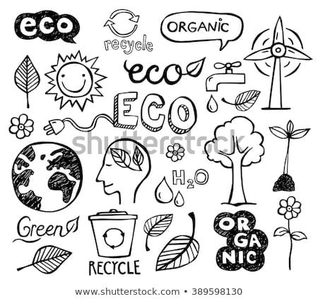 ökológia · energia · kézzel · rajzolt · rajz · ikon · vektor - stock fotó © RAStudio
