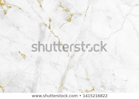 gold tiles template Stock photo © milsiart