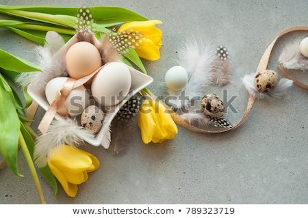 Easter composition with quail eggs and tulips Stock photo © Melnyk