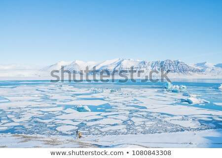 Snow melting by mountain lake Stock photo © Mps197
