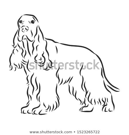 Cartoon teken illustratie gelukkig witte billboard Stockfoto © cthoman