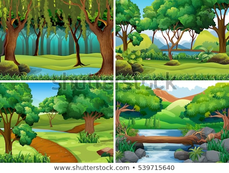 four forest scenes with trees and rivers stock photo © colematt
