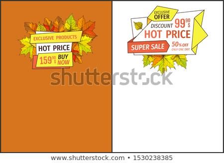 Exclusiv cădea produse cumpara acum super preţ Imagine de stoc © robuart