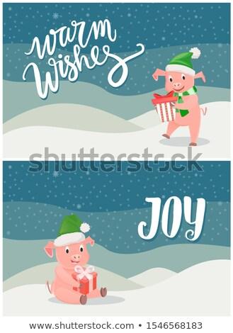 розовый · свинья · Ложь · грязи · счастливым · природы - Сток-фото © robuart