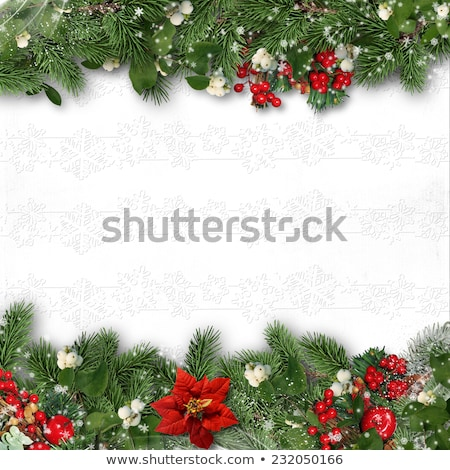 Firtree Border Isolated Stock photo © cammep