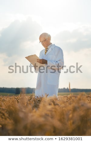 Foto stock: Agricultural Scientist Tracking Data For New Breed Of Grain