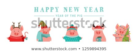 Pig in Hat and Scarf with Gift, New Year Symbol Stock photo © robuart