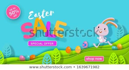 Kellemes húsvétot weboldal bannerek tavasz szezonális promóció Stock fotó © Anna_leni