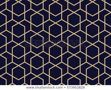 Abstract naadloos lijnen geometrisch patroon muur pen Stockfoto © lemony