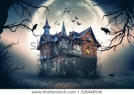 Ijesztő kisértetjárta ház illusztráció terv háttér Stock fotó © colematt