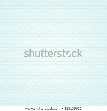 Beautiful geometric seamless background. Grid repeatable blue pattern - elegant diagonal design. Stock photo © ExpressVectors