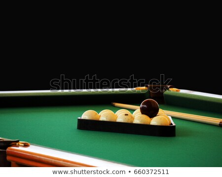 Set for russian billiards Stock photo © nomadsoul1