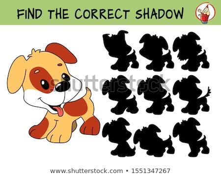 árnyék feladat rajz kutyák kiskutyák illusztráció Stock fotó © izakowski