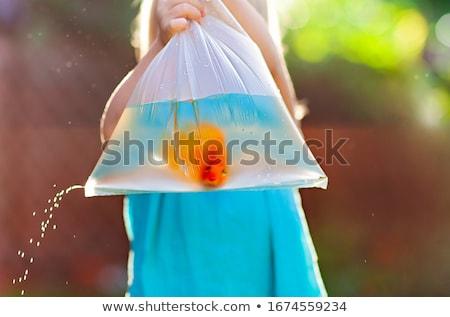 Girl with golden fish in bag on street Stock photo © dashapetrenko