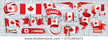 Wektora zestaw banderą Kanada różny twórczej Zdjęcia stock © butenkow