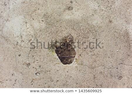 odd tile wall repair Stock photo © Melvin07