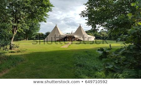 Beyaz düğün eğlence çadır balon havai fişek Stok fotoğraf © m_pavlov