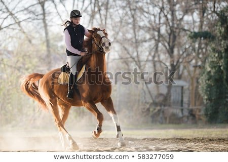 Teenager horse rider Stock photo © photography33