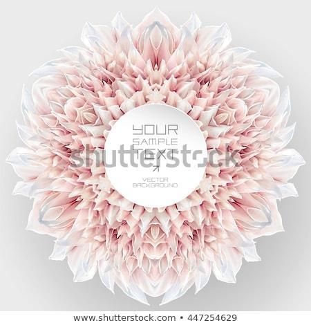 klasszikus · esküvői · meghívó · hat · vörös · rózsák · papír · szeretet - stock fotó © marimorena