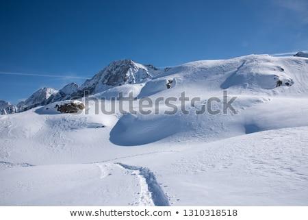 Tonale pass and Presena mount Stock photo © Antonio-S