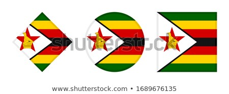 Zimbabwe Flag Icon, isolated on white background. Stock photo © zeffss
