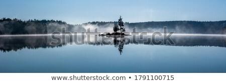 Algonquin Lake Reflection Stock photo © ca2hill