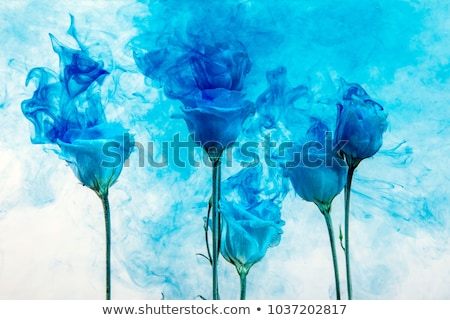 abstract blue floral smoke background stock photo © pathakdesigner