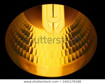 Fluorescencyjny żarówki shot spirali zwarty Zdjęcia stock © stockyimages