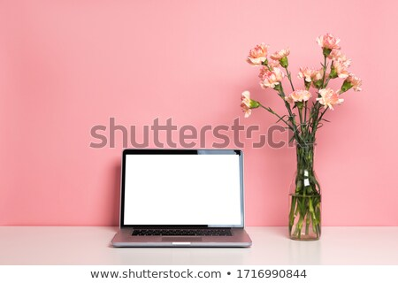 laptop with carnations bouquet Stock photo © Mikko