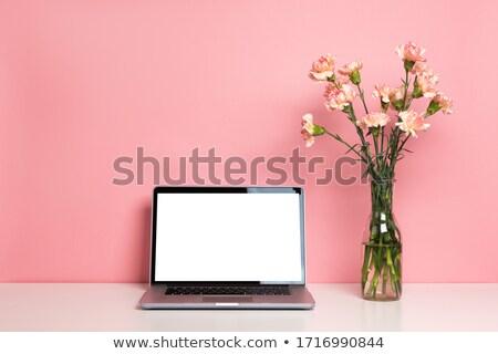 laptop · boeket · klein · uit · scherm · computer - stockfoto © Mikko