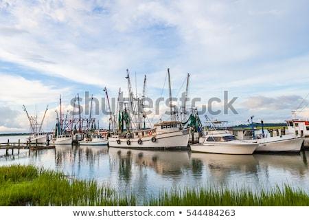 docked shrimp boats stock photo © sframe
